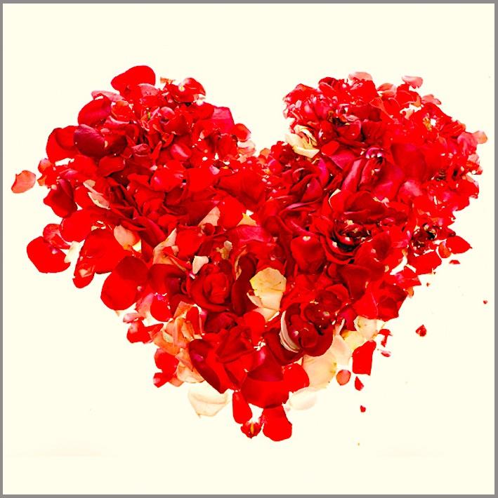 Boheme Valentine