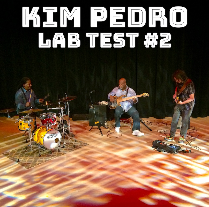 Kim Pedro Trio AT VIPARC CD Cover